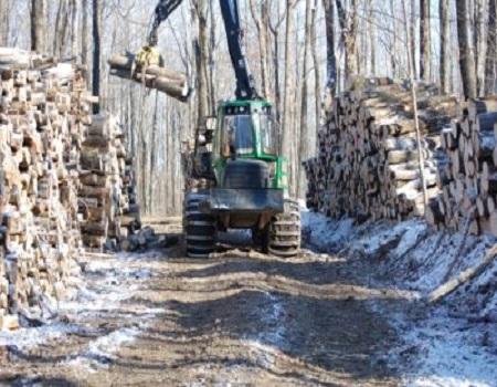 La récolte de bois en Estrie