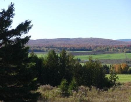 Le transfert de la propriété forestière entre générations