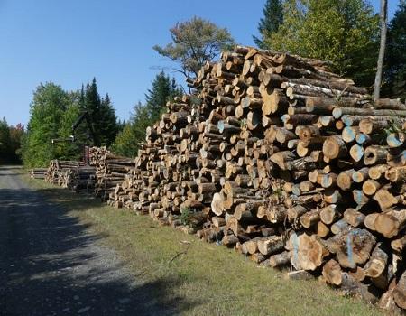 Les propriétaires forestiers du Val Saint-François : un service essentiel!