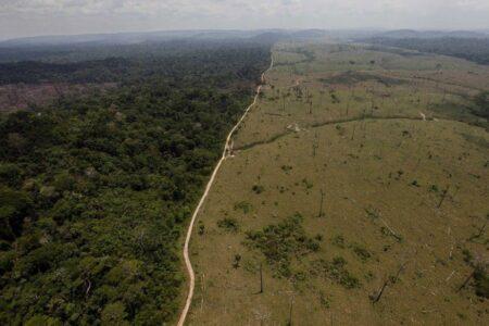 LA FORÊT AMAZONIENNE ÉMETTRICE NETTE DE CARBONE